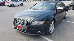 2012 Audi S5 4.2 Premium|MANUAL|WHITE INTERIOR|NAV|CAM|SUNROOF|B