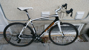 Specialized Roubaix (full carbon)