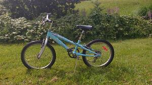 Vélo de 20 po pour fillette