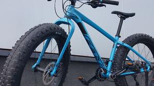 "FELT Double Double 30 (DD30) Fat Bike Bicycle LARGE 21"""