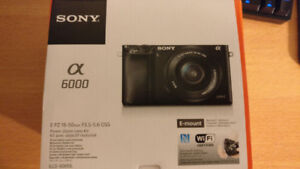 VNDS Sony A6000 Mirrorless Camera with Lens Kit