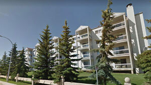 2 bed, 2 bath, 1062 sq ft Updated Condo with Heated Parking