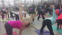 March Break GOAT YOGA! Yes, it's a thing!