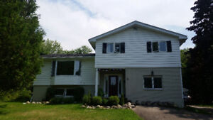 Rothesay Home for sale