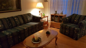 Couch & Chair $100