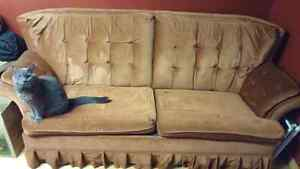 Free pull out couch in good condition!