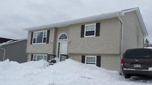 Top Half Of Duplex For Rent Lakewood East Avail March1st