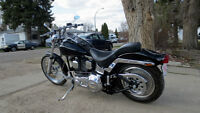 Awesome 1993 Harley Softail 96 ci. 100 + hp  Financing Available