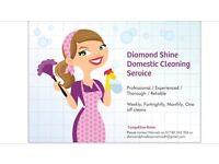 Diamond Shine Domestic Cleaning Service