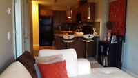 Alura – Executive style downtown 1 bedroom condo for rent