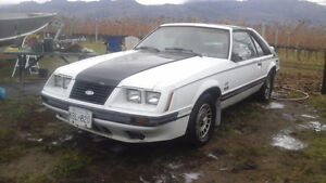 Very rare 1984 Mustang GT t-top