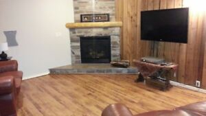 Furnished 1 bedroom basement apartment in Gibbons