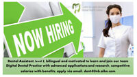 Dental Assistant - Join our Great Dental Team