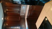 CABINET REFINISHING AND COLOR CHANGE