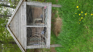 2 6ftx5ft  double sided rabbit hutches 300 each