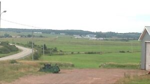 Working beef farm for sale in Nappan, NS Cornwall Ontario image 5