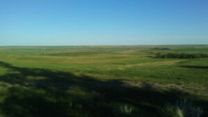 Residential Land with Breathtaking Prairie View (Admiral, SK)