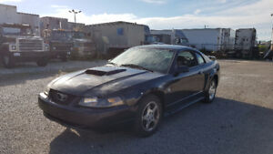 2004 Ford Mustang V6 40th Anniversary Edition