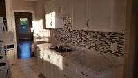 NEWLY RENOVATED NEVER LIVED IN 2 BDRM 1 BATH. BEAUTIFUL!!!