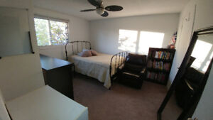 Clean, bright furnished room for rent to a co-op student