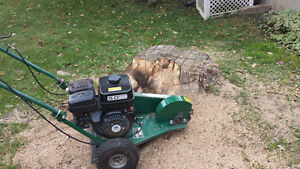 Stump grinding and removals. Peterborough Peterborough Area image 2