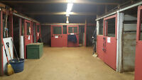 Horse Boarding 5 minutes from Kitchener!!