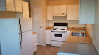 Fully Fenced, Pet Friendly, 2 bed, 1 Bath Upper Suite