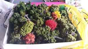 Ho scale layout accessories trees bushes