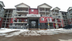 2 Bedrooms Condo, South Facing Balcony. Available for June 1st