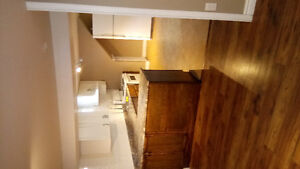 Large one bedroom, recently renovated