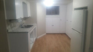 East Mountain Newly Rennovated Basement Apartment For Rent
