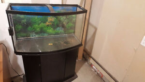 55 gal Bow Front Aquarium/ Fish Tank Cheapest in Alberta!!!!