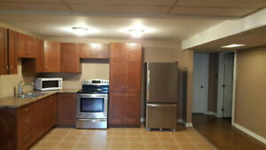 Updated spacious 1 bdr. bsmt apt with Gas Fireplace near College