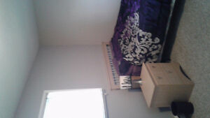 Large furnished room available March 1st