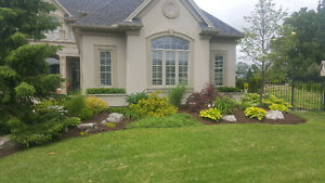 Spring / fall Clean Up Available for Properties / Lawn Clean Up London Ontario image 8