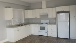 Bright 1 bedroom for April 1