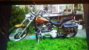 120 cubic inch MONSTER , 95 softail custom