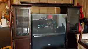 """57"""" Toshiba HD Theatre Wide TV with Wall Unit"""
