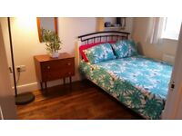 Professional wanted for a Modern Double Room in Marshfield Cardiff £100 p/w inc all bills & cleaning