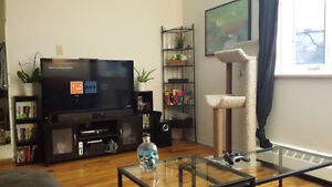 3 Bedroom Apartment $1300 All Inclusive Availible Oct 1st