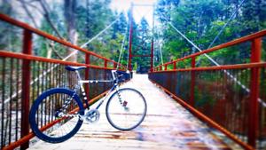 Speed bike / road bike / fixie / fixed gear