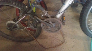 2 bikes for $60