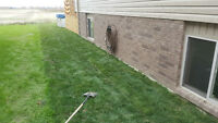 LANDSCAPING  SERVICES AND SOD OFFERED AT GREAT PRICES