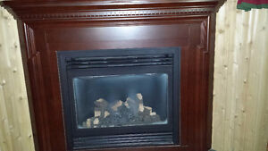 Gas Fire Place Cambridge Kitchener Area image 1