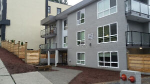 $1400 / 1br - Fully Renovated 1 Bedroom Suite Available - June 1