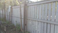 fence removal and installation of new 35x6