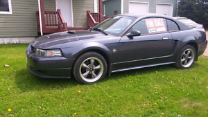 mustang  1999 v6 35 anniversary  very solid car!!!!!!!!