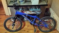 """BMX, Trick or Freestyle. Free Agent """"Air Strike"""".$130.00.obo"""