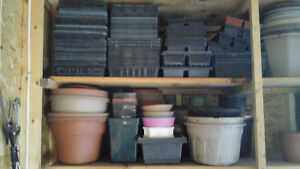 Flower Pots and Trays