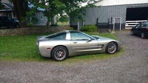 1999 Corvette